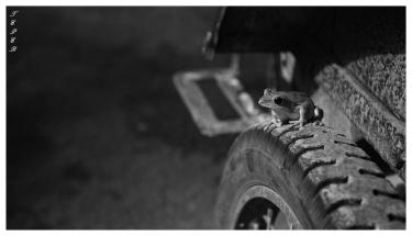 Cambodia. 7D | 35mm 1.4