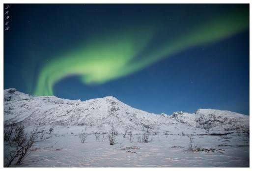 Northern Lights | 5D Mark III | 16-35mm 2.8L
