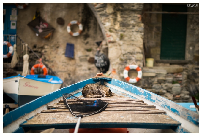 The locals take a relaxed approach, Riomaggiore, Italy. 5D Mark III   50mm 1.4 Art