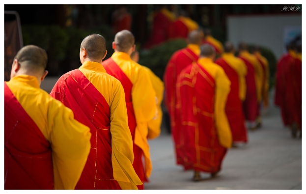 Monks arrive to perform at one of Shanghai's most popular temples. 5D Mark III | 135mm 2.0L