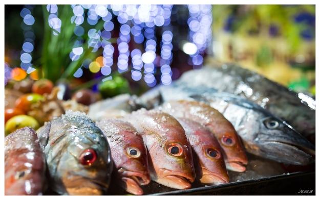 Fish display. 5D Mark III   35mm 1.4 Art