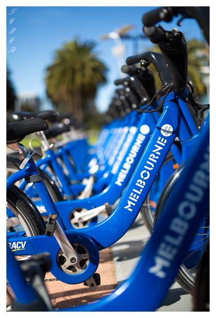 Melbourne Cycles | 5D Mark III | 50mm 1.4 Art