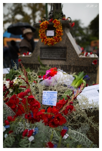 Remembering the animals of war. Anzac Day 2015, 5D Mark III | 24mm 1.4 Art