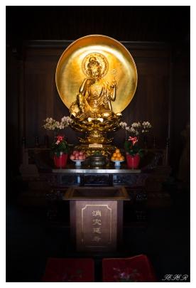 Jade Buddha Temple. 5D Mark III | 24mm 1.4 Art
