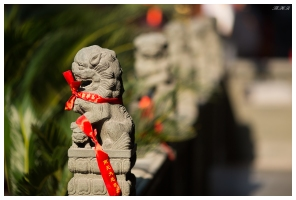 Jade Buddha Temple. 5D Mark III | 135mm f2L