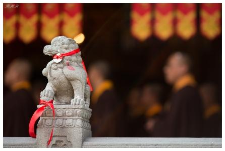 Jade Buddha Temple. 5D Mark III | 135mm f2L