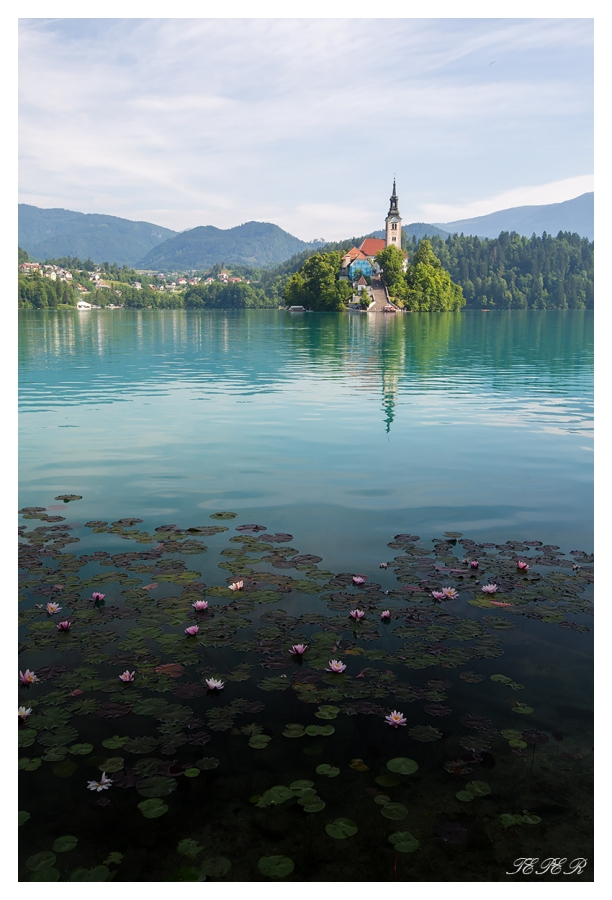 Bled Pilgrimage Church. 5D Mark III | 16-35mm 2.8L II