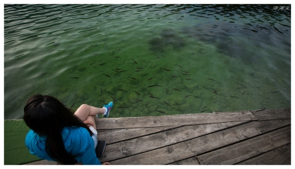 Fish! Lake Bohinj, Slovenia. 5D Mark III | 16-35mm 2.8L II