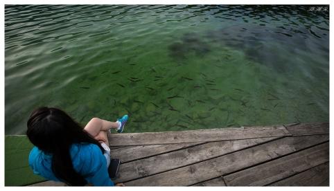 Fish! Lake Bohinj, Slovenia. 5D Mark III   16-35mm 2.8L II