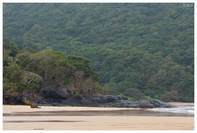 My beach. 5D Mark III   135mm f2L