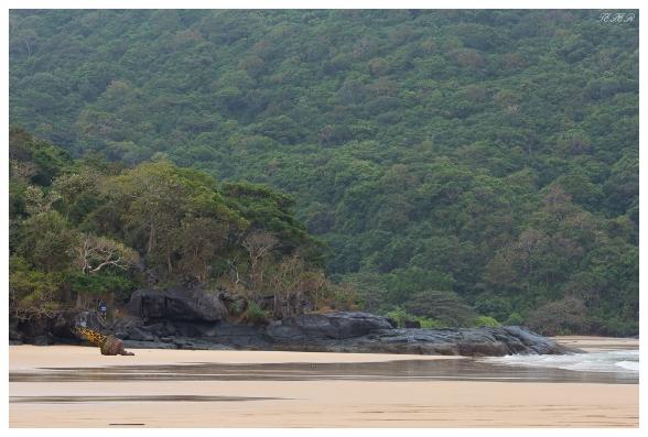 My beach. 5D Mark III | 135mm f2L