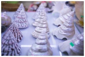 Sea shells anyone? Con Dao Airport 5D Mark III | 35mm 1.4 Art
