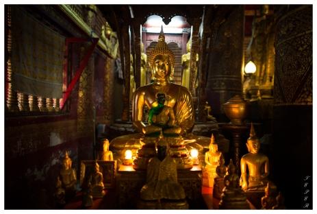 Luang Prabang, Laos. 5D Mark III   24mm 1.4 Art