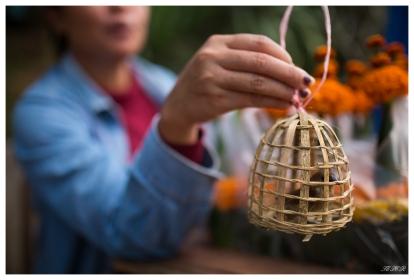 Set this bird free... Luang Prabang, Laos. 5D Mark III | 35mm 1.4 Art