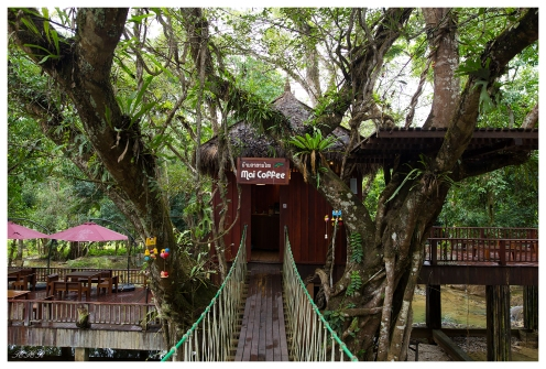 Coolest cafe ever. Laos. 5D Mark III   24mm 1.4 Art