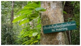 No Poaching, Kuang Si Falls, Laos. Canon G7X