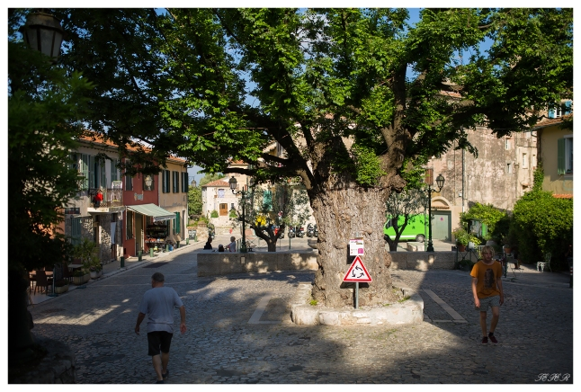 Best round-about ever, Gorbio, France. Canon 5D Mark III | 35mm 1.4 Art