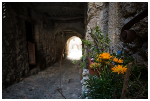 Old pathways in Gorbio, France. Canon 5D Mark III | 18mm 2.8 Milvus