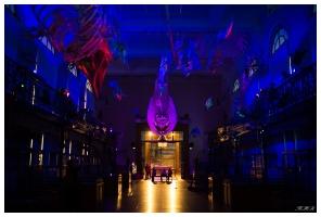 A night in the musuem! Monaco Oceanographic Museum. Canon 5D Mark III   35mm 1.4 Art