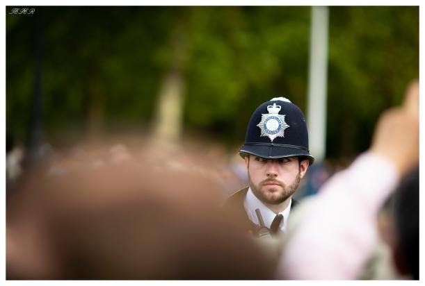 A watchful eye, Buckingham Palace. London. 5D Mark III   135mm 2.0L