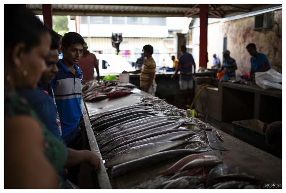 Visiting the markets, Victoria, Mahe, Seychelles. 5D Mark III | 35mm 1.4 Art