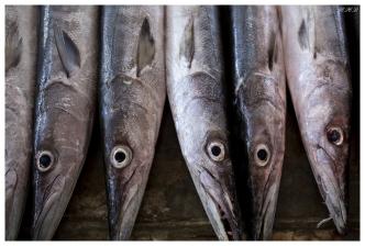 Visiting the markets, Victoria, Mahe, Seychelles. 5D Mark III   35mm 1.4 Art