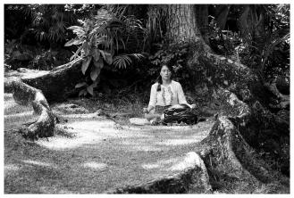 Botanical Gardens, Mahe, Seychelles. 5D Mark III   100-400L IS II