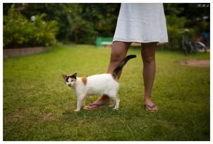 A friendly local. Praslin, Seychelles. 5D Mark III | 35mm 1.4 Art