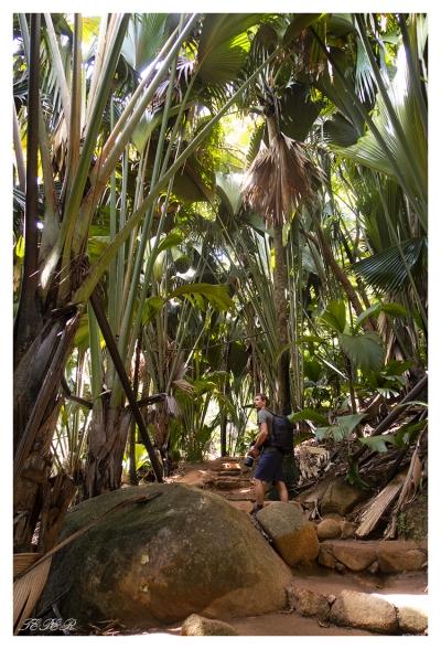 Praslin, Seychelles. G7X