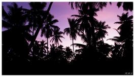 Around Praslin, Seychelles. G7X