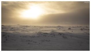 Somewhere in Iceland. 5D Mark III | 50mm 1.4 Art
