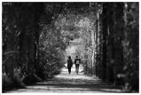 Botanical Garden Munich-Nymphenburg. Canon 5D Mark III   180mm 2.8 OS Macro