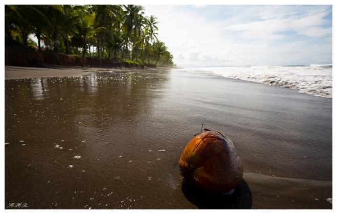 Clandestino Beach Resort, Costa Rica. 5D Mark III | 18mm 2.8 Milvus