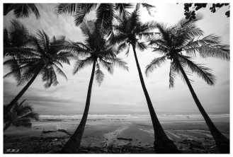 Santa Teresa, Costa Rica. 5D Mark III | 12-24mm f4.0 Art
