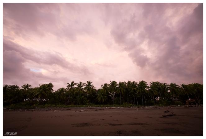 Clandestino Beach Resort, Costa Rica. 5D Mark III   12-24mm f4.0 Art